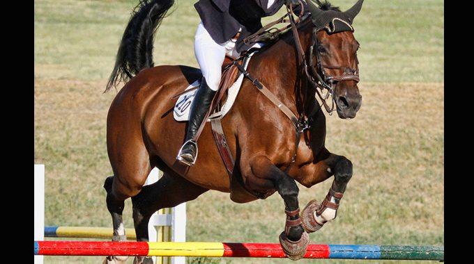 Stop Your Horse From Stalling In The Air Over A Jump