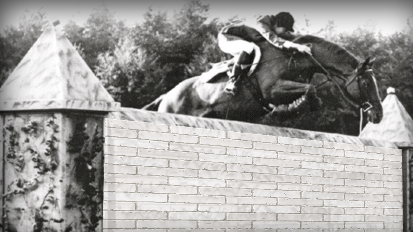 exercise to train a horse to shorten stride over combination jumps
