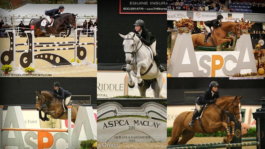 equitation horse show