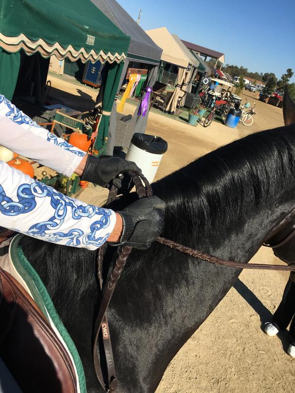 bridged reins