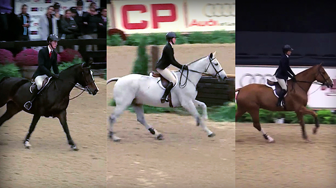 Lengthen The Canter: What Seat Does A Judge Want To See A Rider In For An Equitation Class?