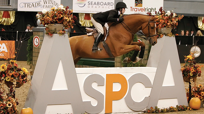Clarifying The Different Big Equitation Medal Classes