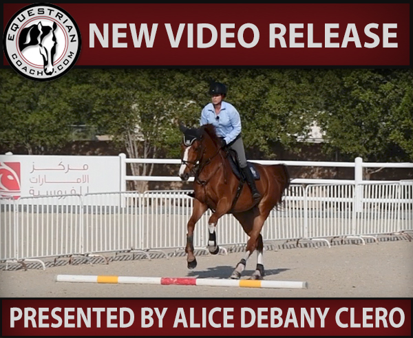 exercise for your horse on the flat over poles