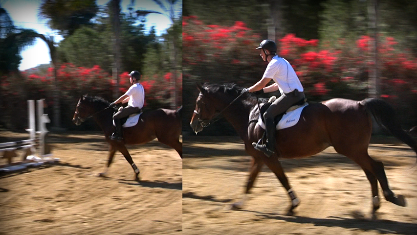 learn how to stop leaning on your horse