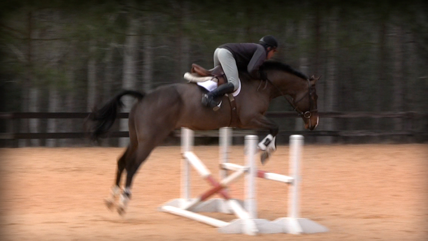 leaning forward on your horse at the jump