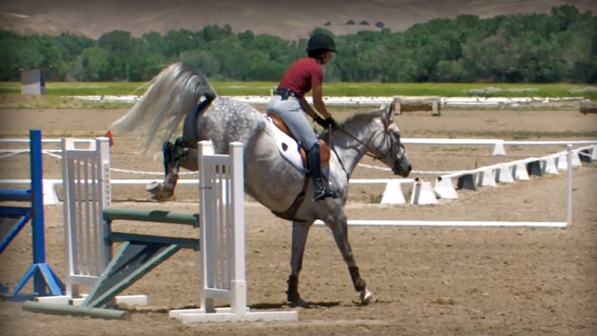 training your three day event horse to jump angle and narrow jumps