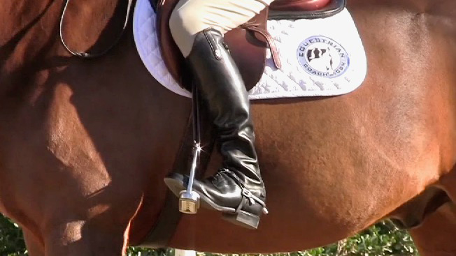 ideal leg position on a horse