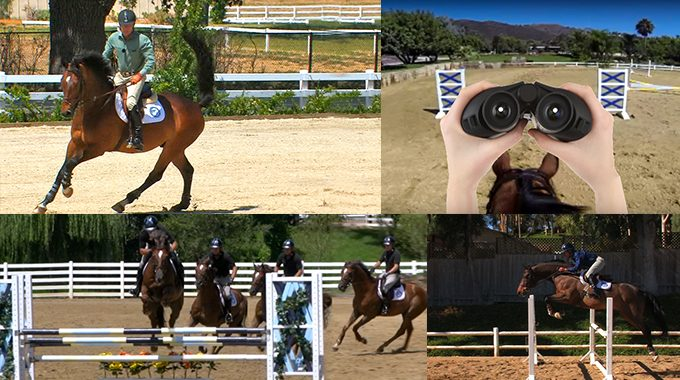 Ten Of Bernie's Favorite Videos On EquestrianCoach.com